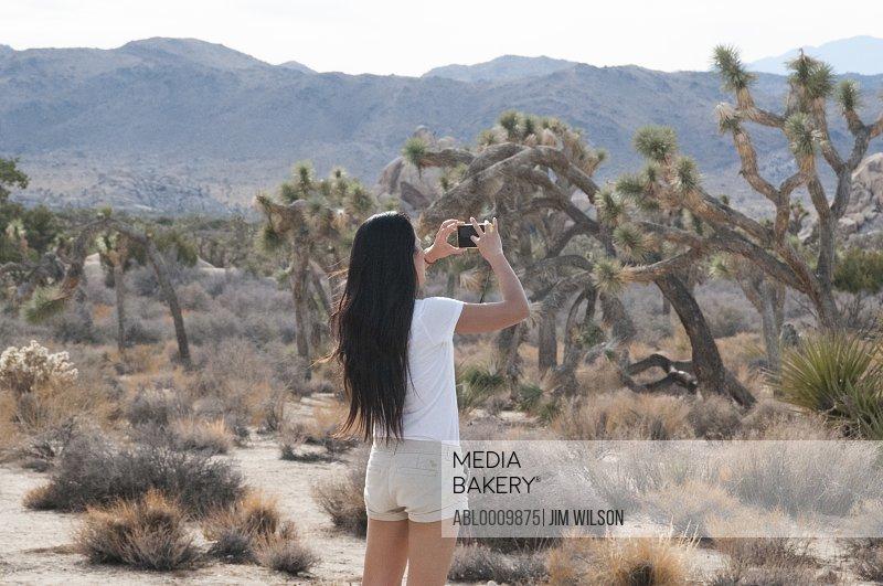 Woman Taking a Photograph, Joshua Tree National Park, California, USA