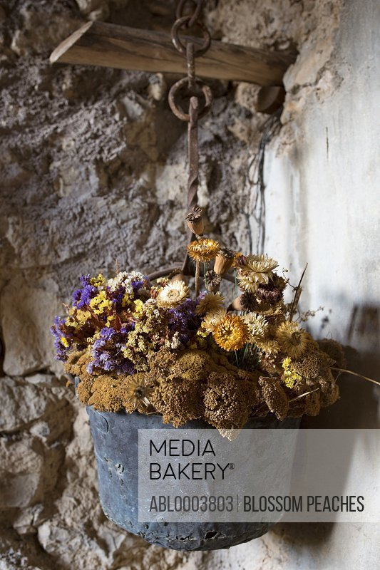 Hanging Basket with Dried Flowers