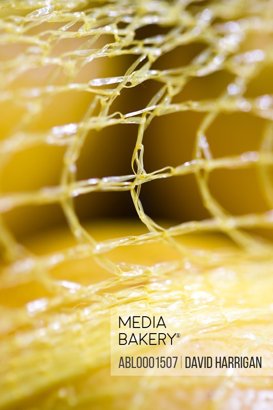 Extreme close up of lemons in a mesh bag