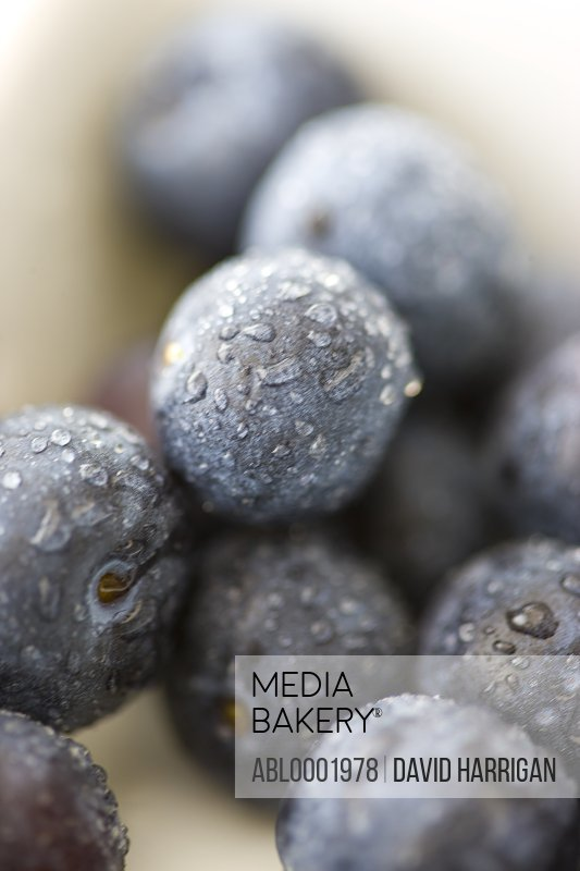 Extreme close up of blueberries