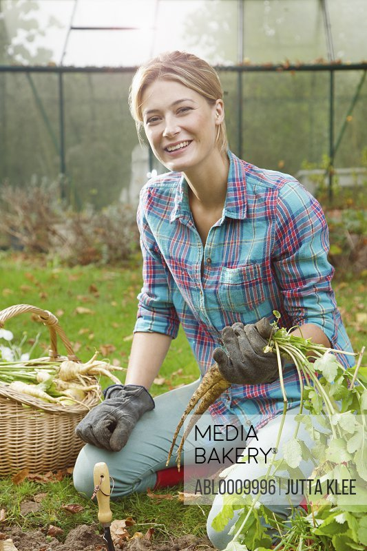 Woman in Garden Digging up Parsnips