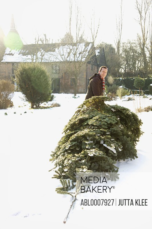 Man Dragging Christmas Tree on Snow