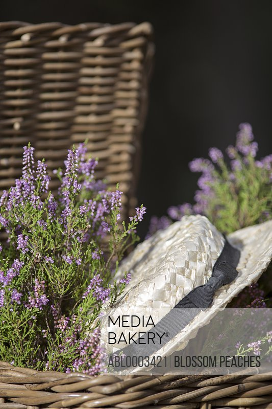 Straw Hat and Lavender Flowers in Wicker Basket, Close-up View