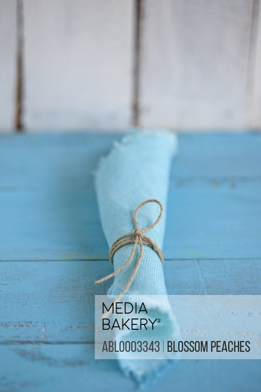 Turquoise Napkin Tied with String