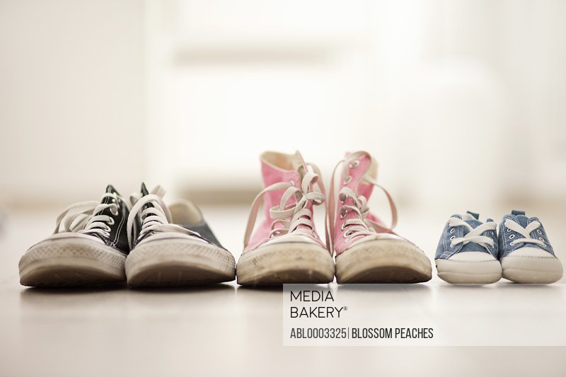 Three Pairs of Canvas Trainers, Close-up View