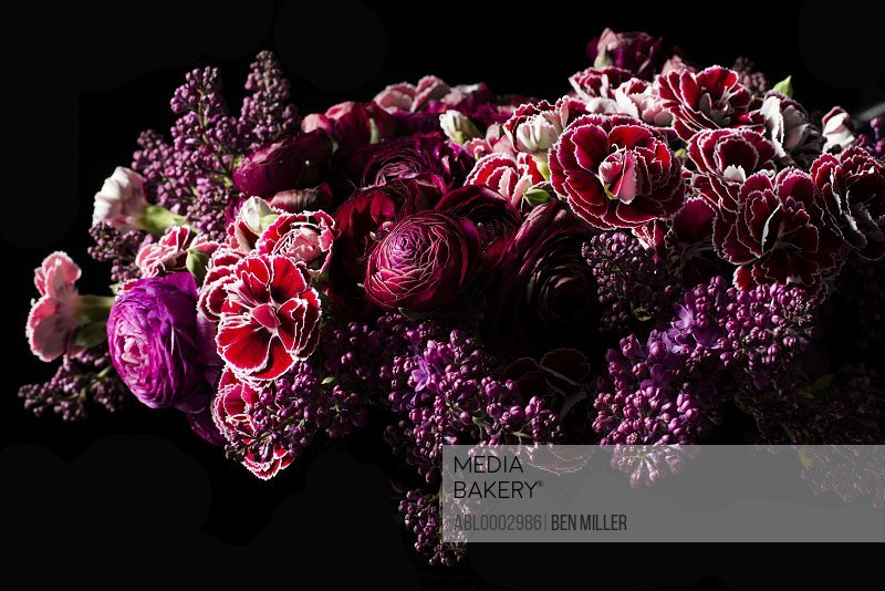 Close up of Bouquet of Flowers