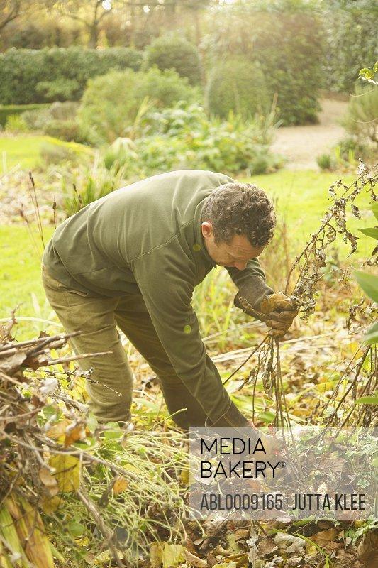 Gardener Cutting Weeds