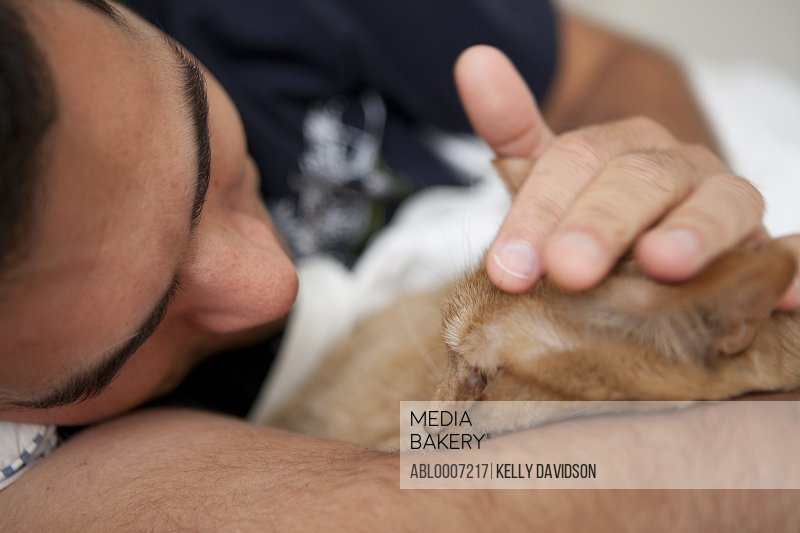 Man Stroking Ginger Cat, Close-up view