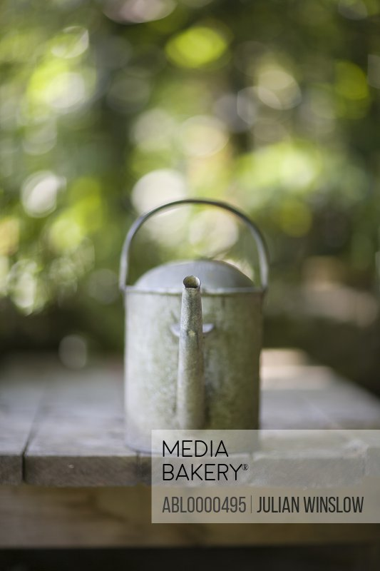 Summer garden and metal watering can