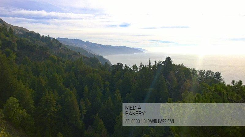 View of Big Sur Coastline, California, USA