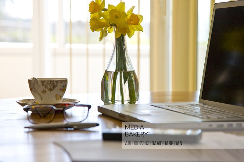 Laptop and Vase of Daffodils on Office Desk
