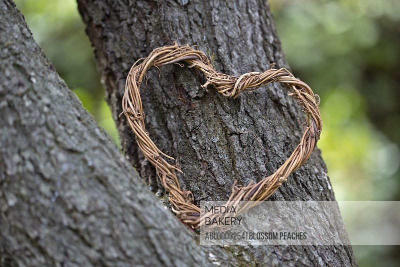 Intertwined Twigs Heart Shaped Wreath Leaning on Tree Trunk