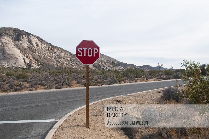 Stop Sign on Bending Road, Joshua Tree National Park, California, USA