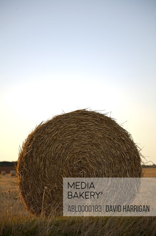 Close up of round hay bale