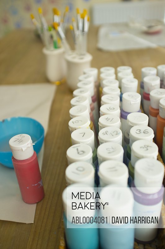 Assorted Painting  Colours Containers
