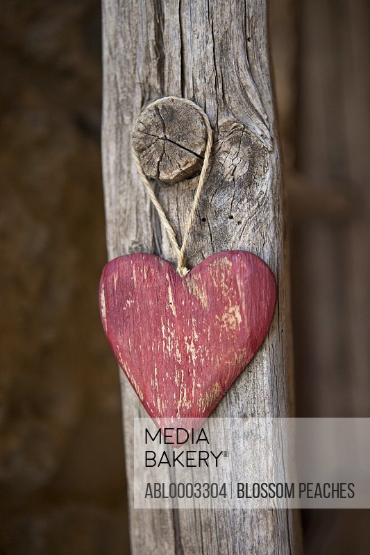 Heart Shaped Decoration Hanging from Wood Pole
