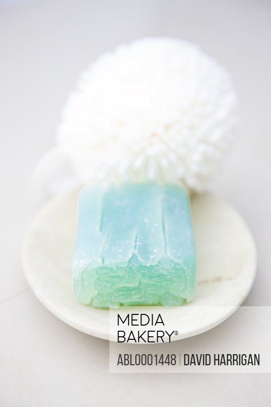 Close up of a green soap and bath sponge on a soap dish