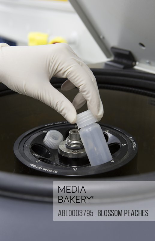 Lab Technician Placing Sample in Centrifuge, Close-up View