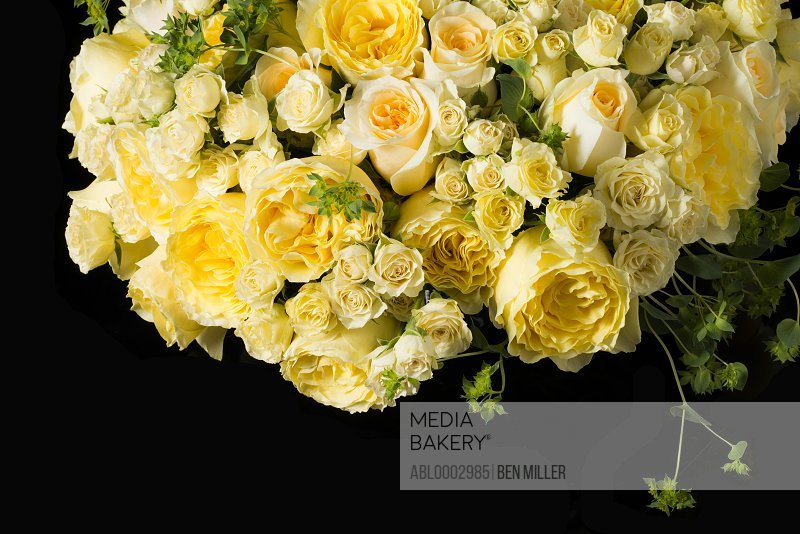 Close up of Bouquet of Yellow Roses and Persian Buttercup Flowers