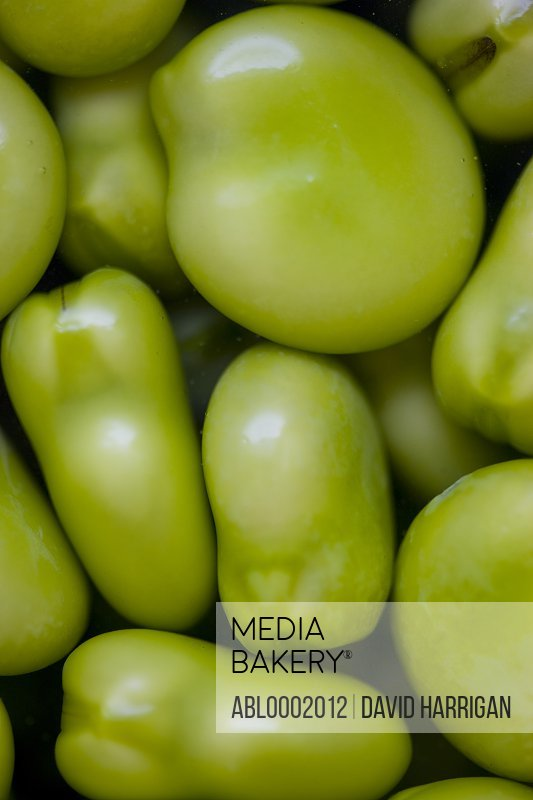 Extreme close up of Broad Beans