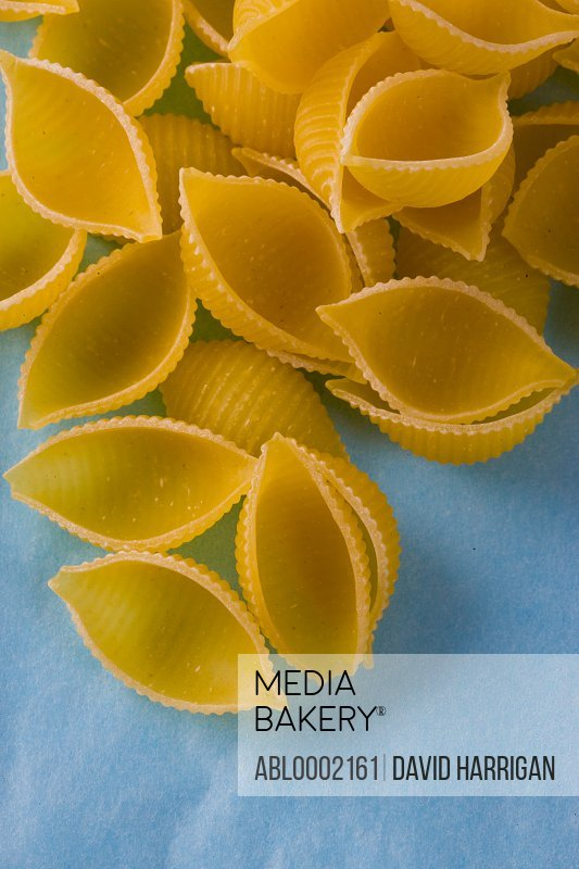 Conchiglie Pasta Shells