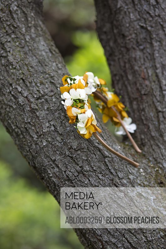Floral Headdress Leaning on Tree Trunk
