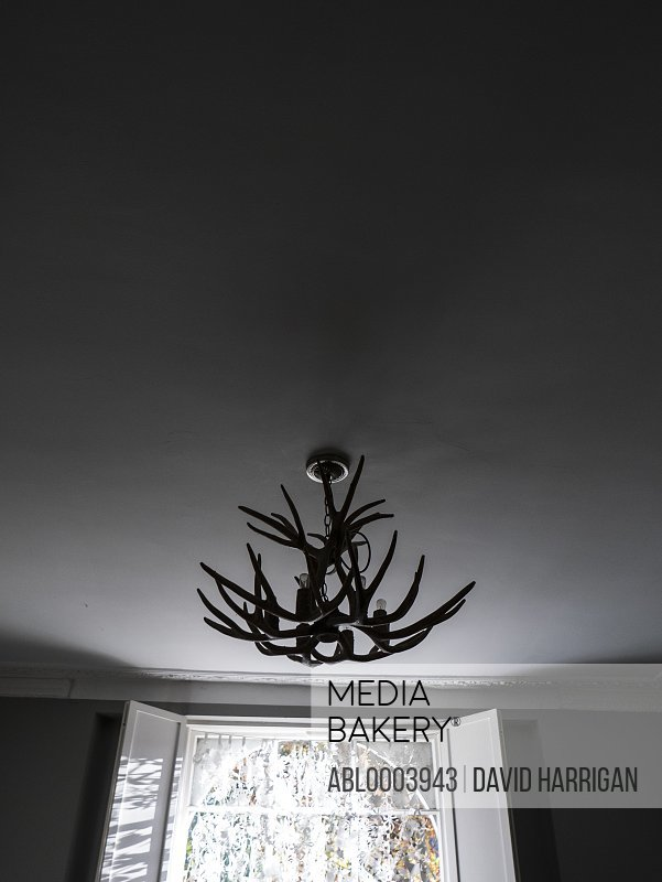 Antlers Ceiling Light