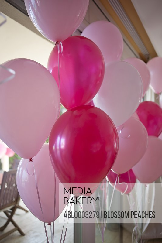 Red and Pink Party Balloons, Close-up View