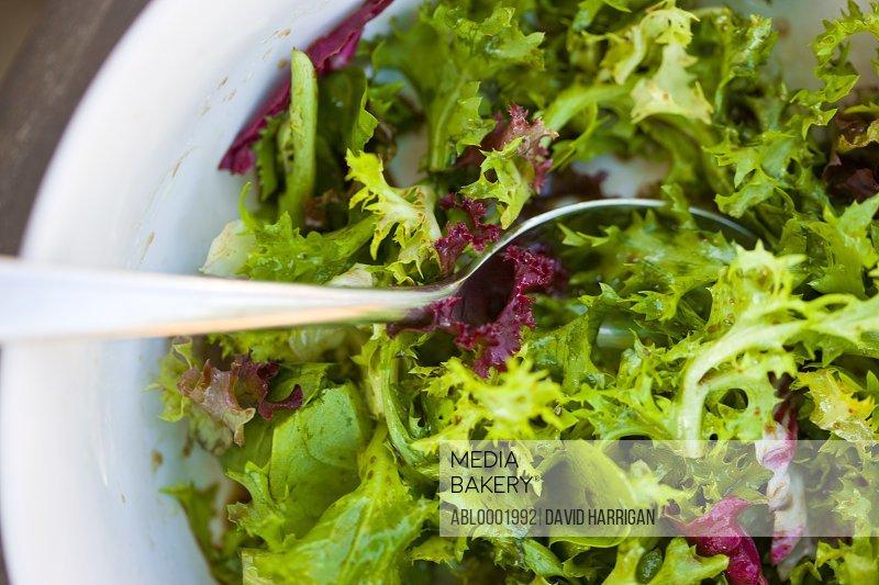Mixed Leaves Salad