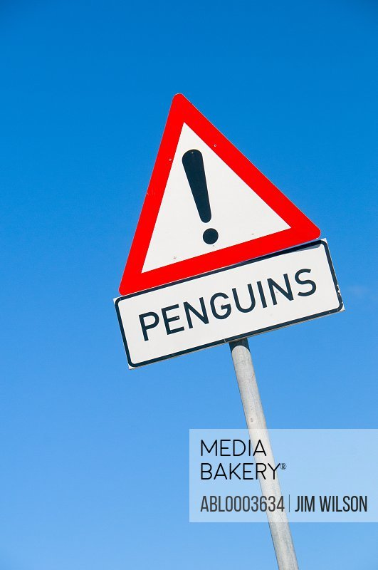 Warning Road Sign for Penguins