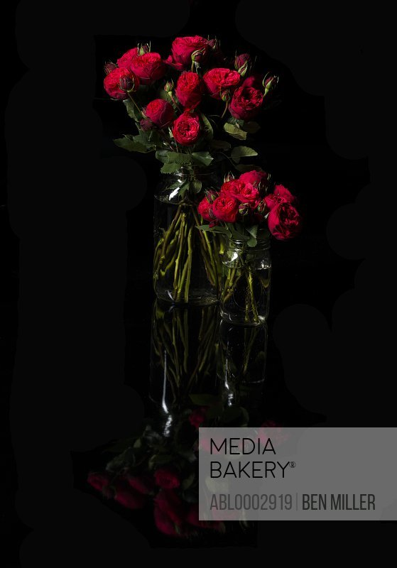 Red Roses in Glass Vases