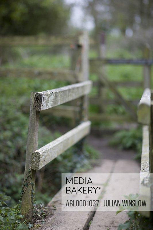 Countryside boardwalk