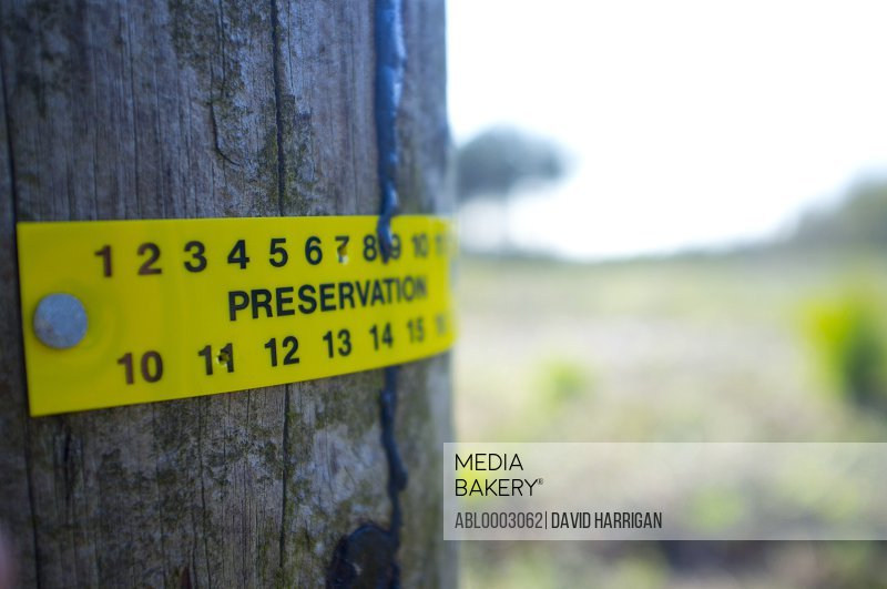Preservation Sign on Tree, Close-up View