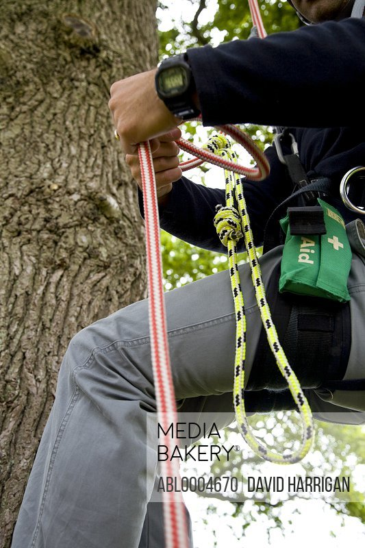 Climber body dangling from a tree tying a knot