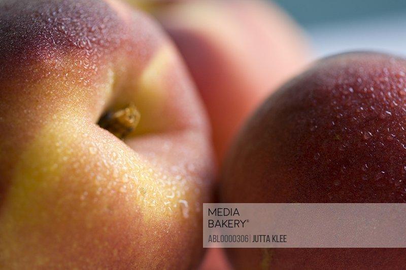 Extreme close up of three peaches (Prunus persica)