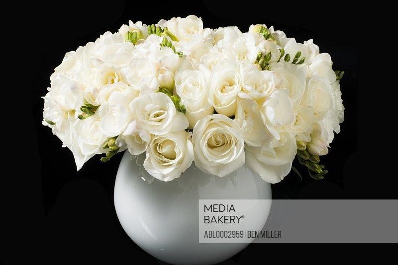 Bouquet of White Roses and Freesia Flowers in a Vase
