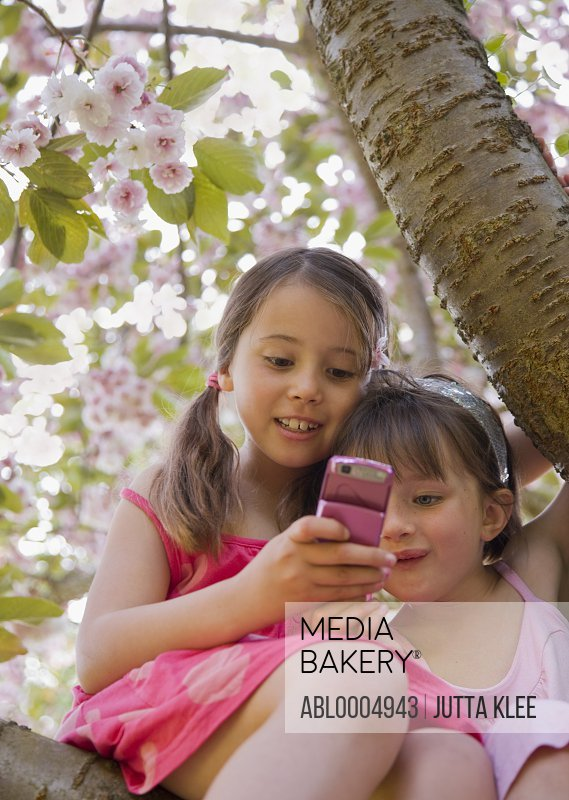 Two smiling young girl sitting on a the bough of a tree holding cell phone
