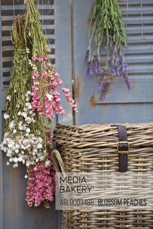 Wicker Trunk and Hanging Flowers
