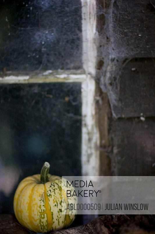 Yellow pumpkin on window sill with cobweb
