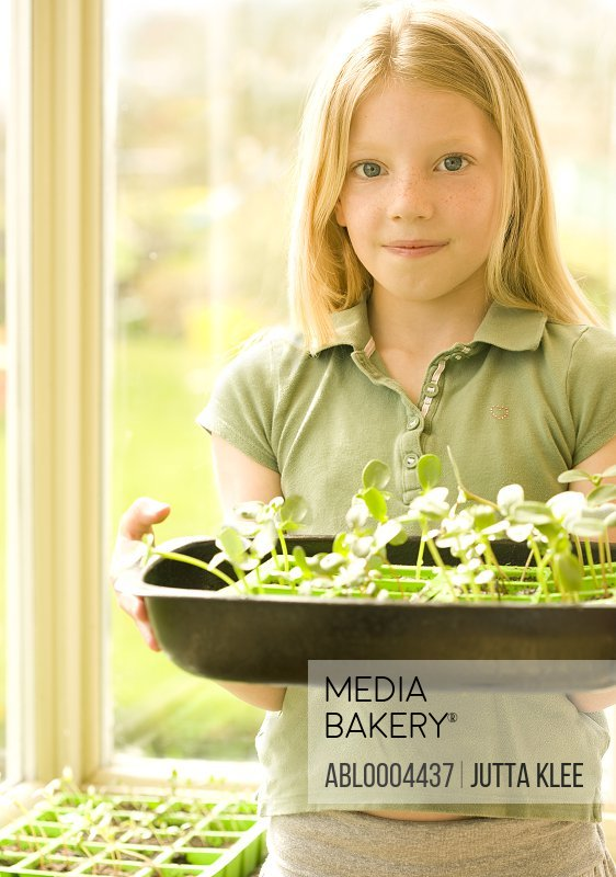 Portrait of young girl holding seedlings tray