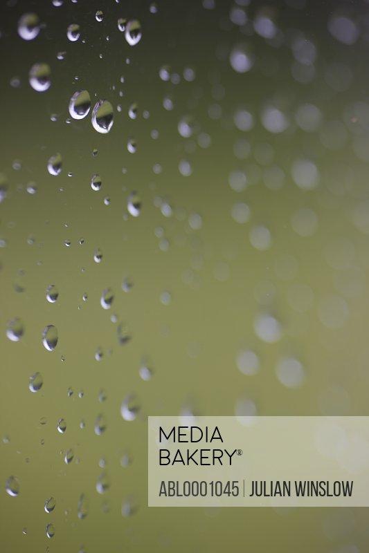Close up of raindrops