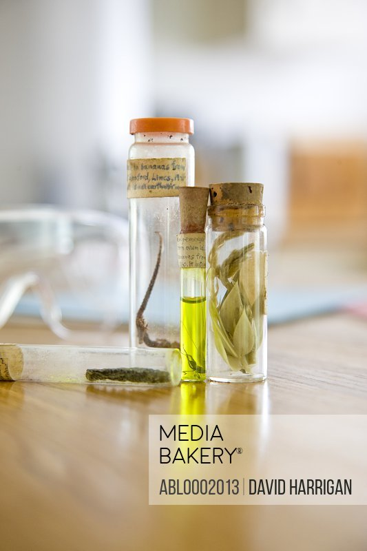 Biology Preserving Glass Containers