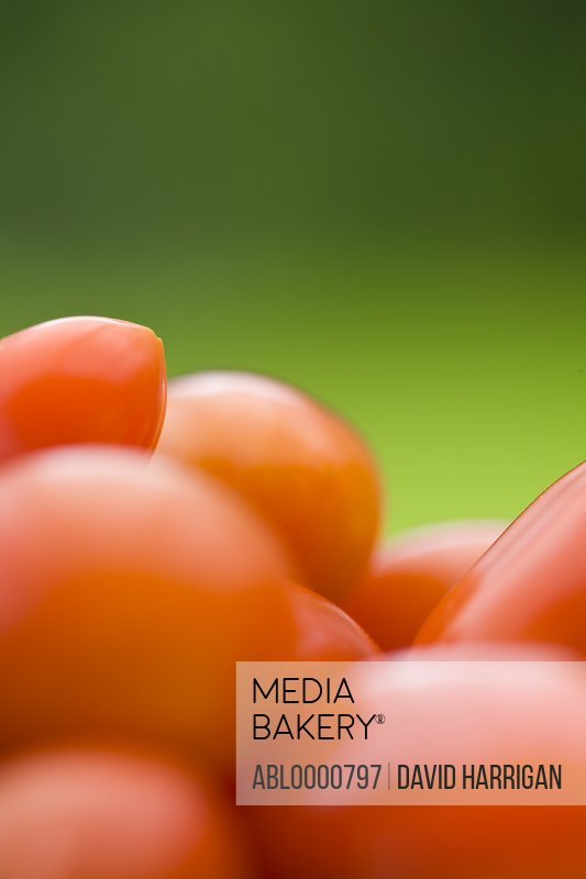 Little plum tomatoes