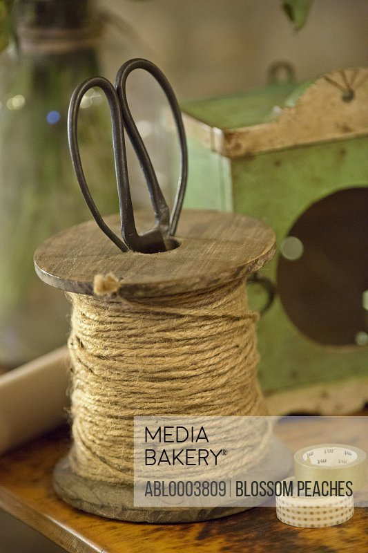 Spool of String with Scissors