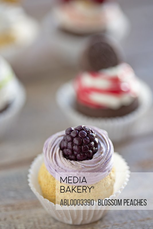 Blackberry Cupcake