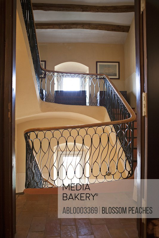 Staircase with Ornate Wrought Iron Railing