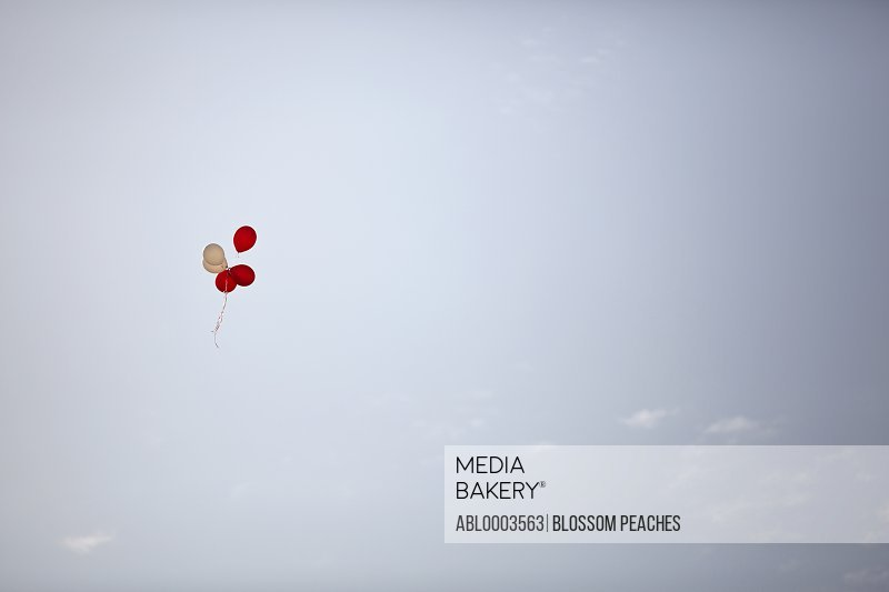 Party Balloons Floating in Sky