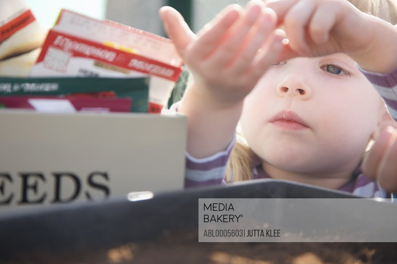 Extreme close up of a girl pouring seeds into a gardening tray