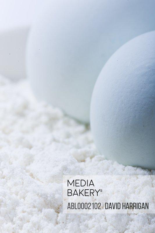 Light Blue Eggs on Flour - Close-up view