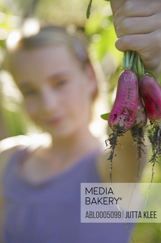 Close up of girl hand holding a bunch of radishes